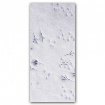 Tracks in the snow motif print