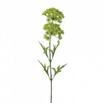 Deco grass giant hogweed