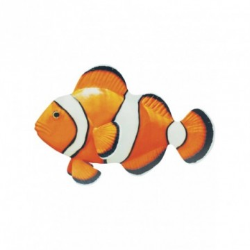 "Tropical fish ""clown fish"""